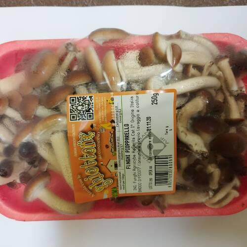 Funghi Pioppini confezione